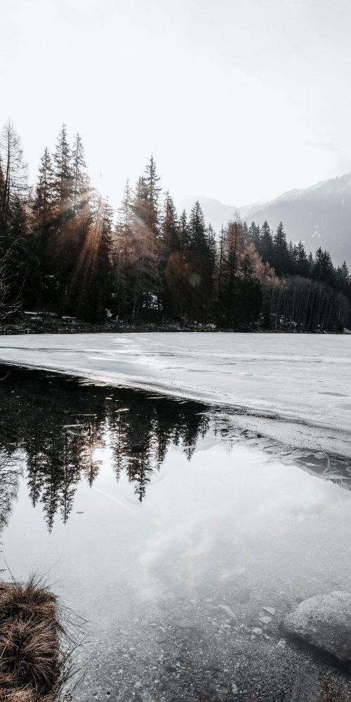 vue sur le lac avec forêt et montagne, saint-colomban-des-villards, savoie