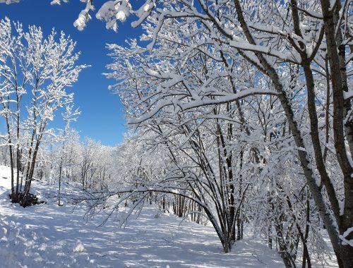 saint colomban des villards hiver neige